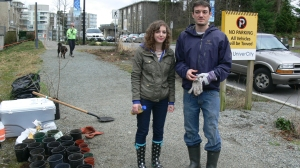thanks for the good work! plants due for mountain forest rehabilitation projects