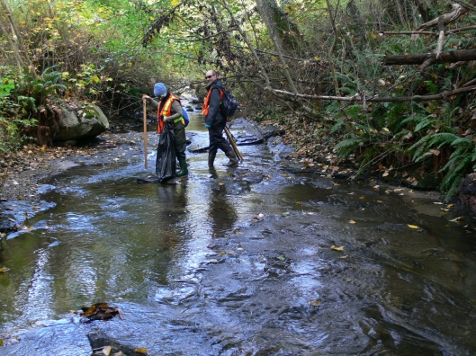 Stoney Creek, Fall 2010
